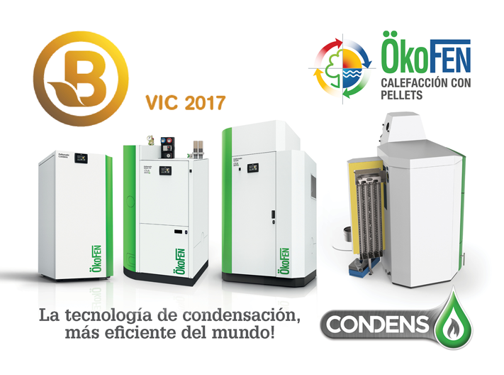 feria vic biomasa 2017